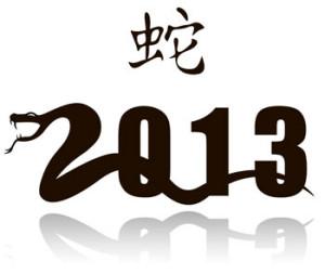 Год Черной Змеи 2013